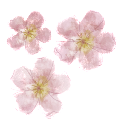 blossoms-1