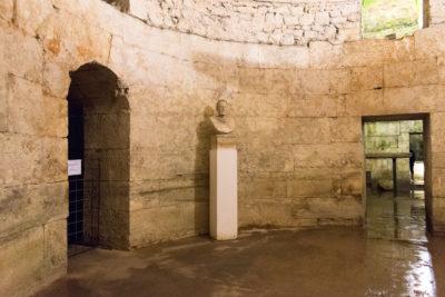 cellar-11