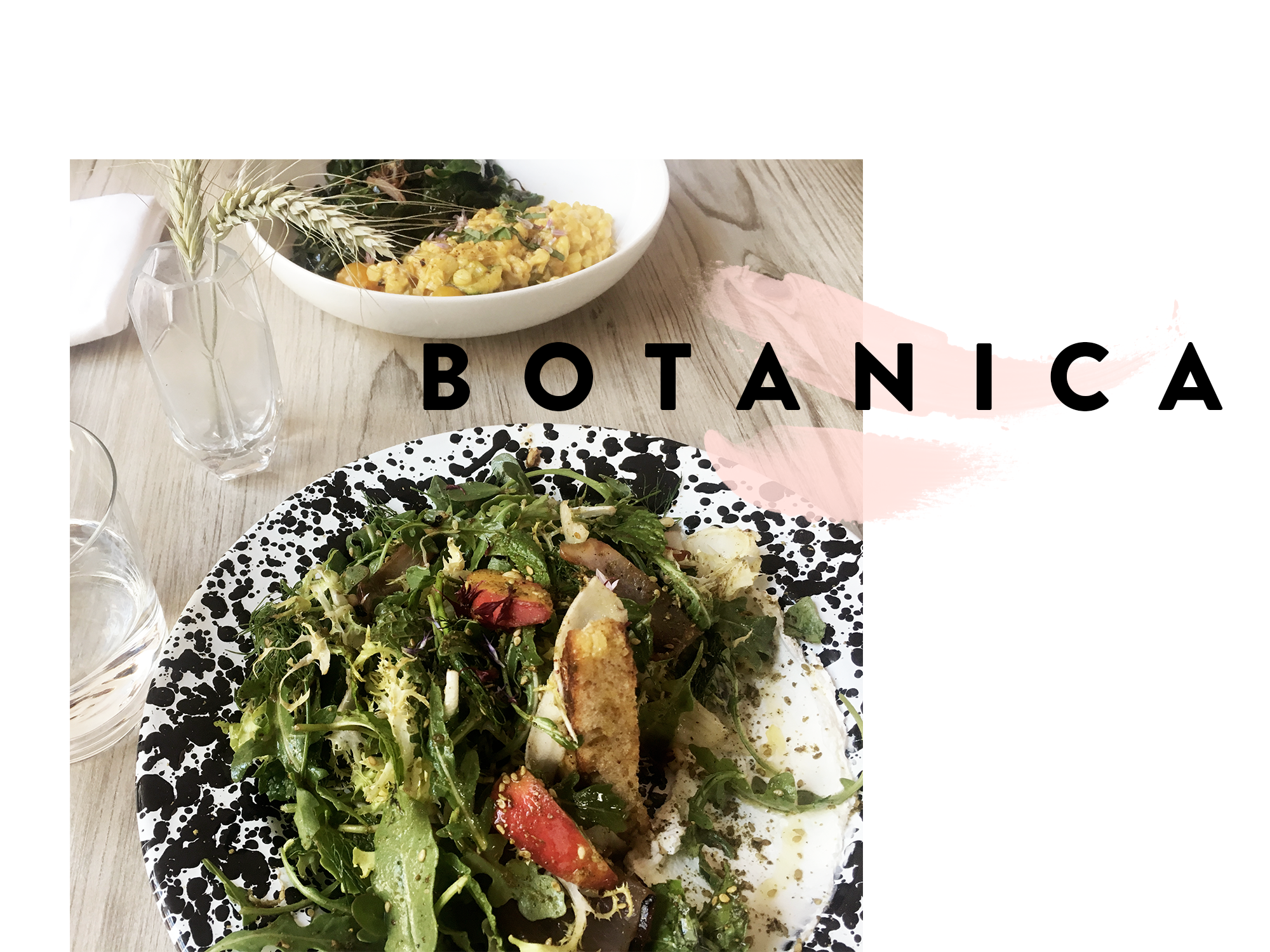 botanica-graphic