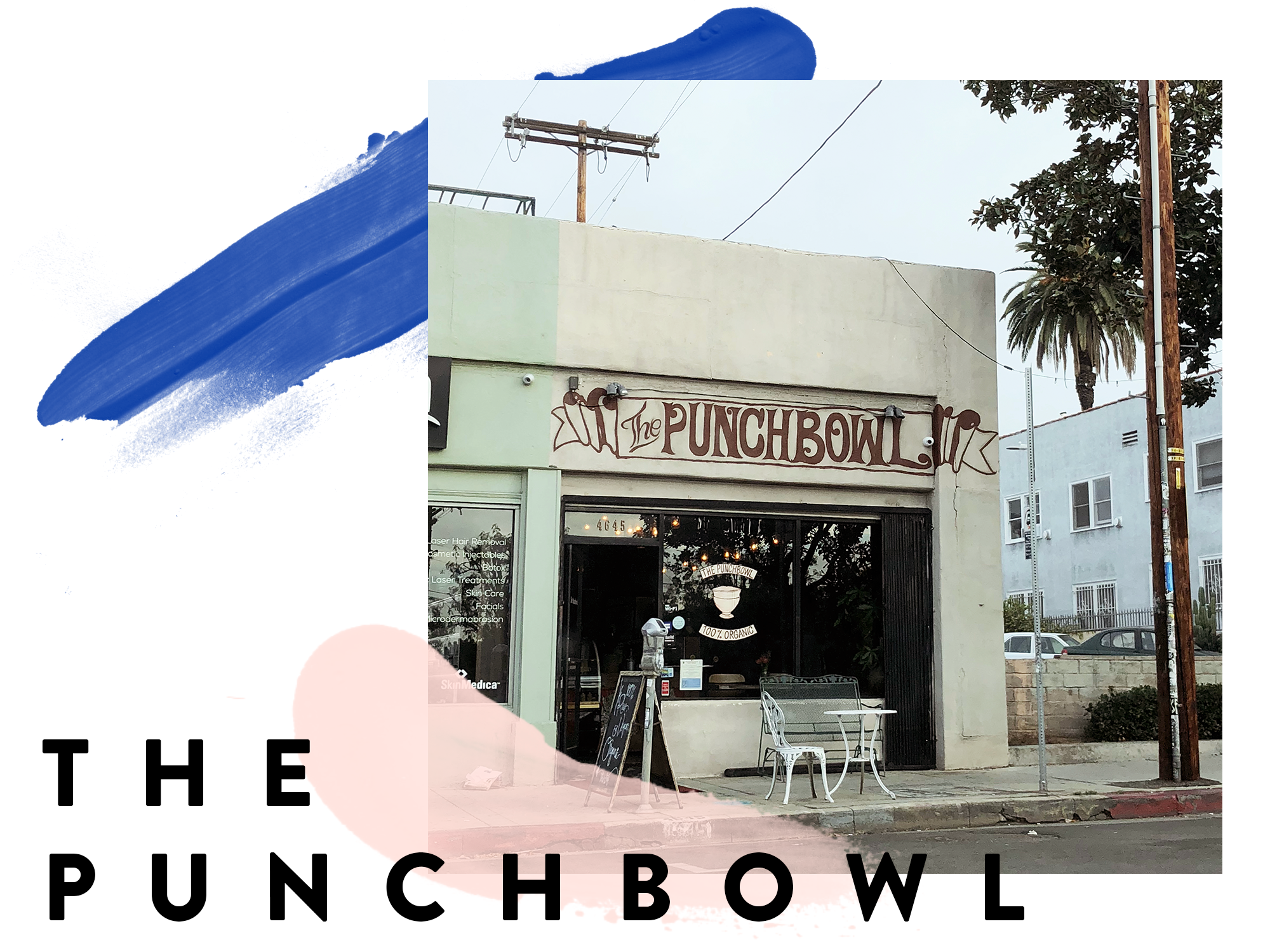 punchbowl-graphic